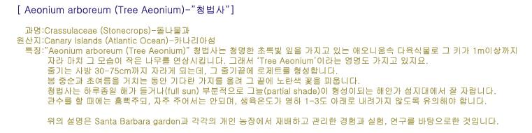 내용출처:http://www.smgrowers.com/products/plants/plantdisplay.asp?strSearchText=Aeonium%20arboreum&plant_id=3197&page=